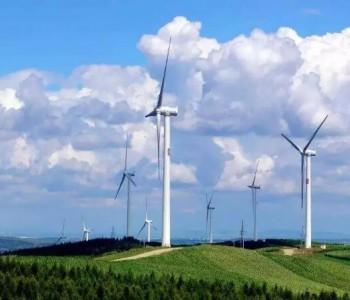 簽約、中標、核準、施工、并網.五大電力集團2019年度<em>風電</em>項目情況統計!