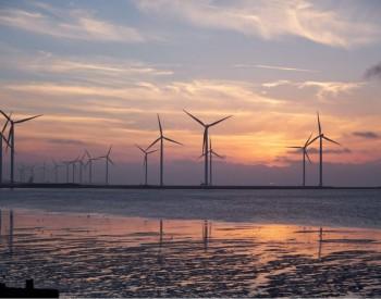 国电电力将在内蒙古包头进行大规模风电项目开发