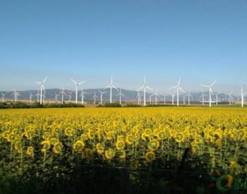 独家翻译|Rystad Energy:新冠肺炎将导致2020年预期<em>风电</em>和光伏<em>新增装机</em>量减少