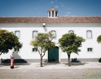 新冠疫情爆发,葡萄牙推迟700MW太阳能项目招标