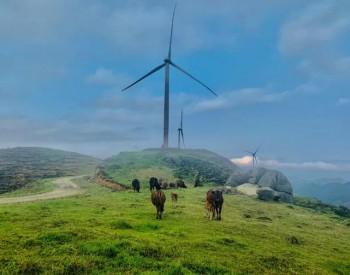 规划装机1.2GW!菲律宾首批海上风电!