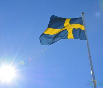 独家翻译|同比增长近70%!2019年瑞典运营中<em>光伏装机</em>量达698MW