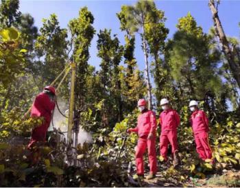 青海油田山地地震攻关技术在尼泊尔独领风骚