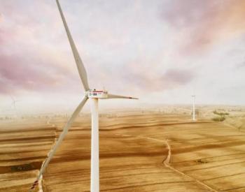黑龍江綏濱縣二九〇<em>分散式</em>風力發電項目舉行開工儀式