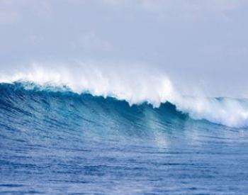 """四部门开展""""碧海2020""""海洋生态环境保护专项执法行动"""