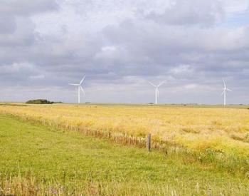 天津2020年风电建设:逾期未并网风电项目自动转为平价,不再享补贴!