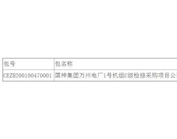 中标|国神集团重庆万州电厂1号机组C级检修采购项目公开<em>招标</em>中标结果公告