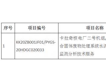 卡拉奇<em>核电</em>厂二号机组/三号机组综合固体废物处理系统水泥固化体性能监测分析<em>技术</em>服务...
