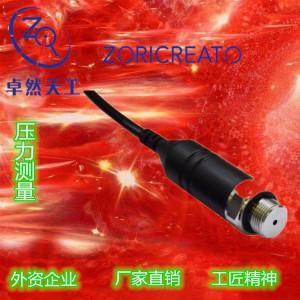 PT10SR-2893 型压力变送器-卓然天工