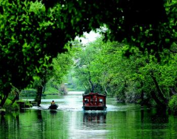 """""""天堂绿肺""""养成记 西溪湿地:从污水横流到城市<em>生态建设</em>标杆"""