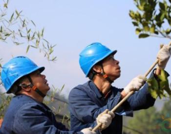 国网湖南新邵县供电公司对易发生山火隐患的区域进行重点管控