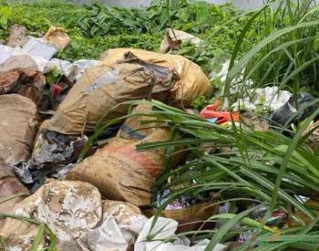 广东一企业偷倒工业废料被查处 或面临最高5万元罚款