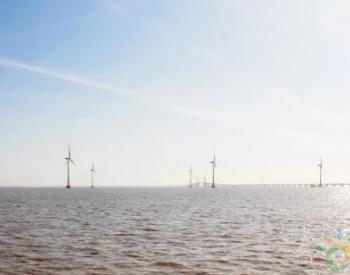 """中广核研究院""""漂浮式海上风电与<em>海洋牧场</em>融合关键技术研究""""项目获批"""