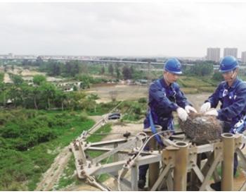 "<em>输电</em>铁塔上有了""公租房""海南电网近年来搭建近3000个鸟巢"
