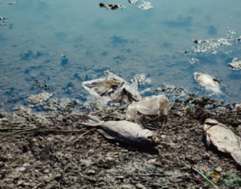贵州贵阳确保全市受污染耕地安全利用率达90%以上