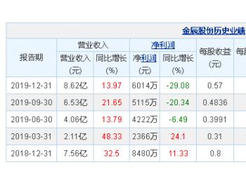 <em>金辰股份</em>2019年净利润6014万元 同比下降29.08%