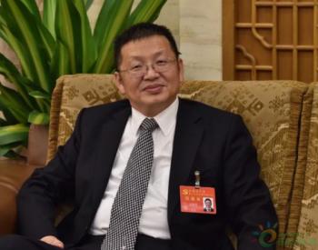 二十国集团能源部长特别视频会议召开