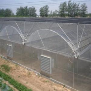 薄膜连栋温室建设/青州鑫艺农温室工程/薄膜连栋温室