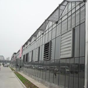 玻璃连栋温室建设/青州鑫艺农温室工程/玻璃连栋温室