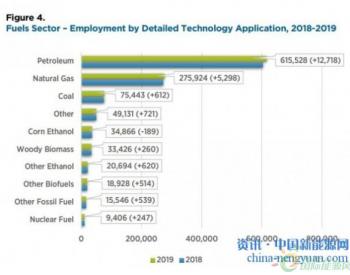 报告显示:2019年美国<em>生物能源行业</em>的就业有所增长