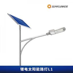 节能型锂电智能6-8米30W太阳能LED路灯L1厂家直销