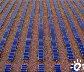 独家翻译 | WoodMac:NEXTracker荣登2019年全球太阳能跟踪器供应商排行榜榜首