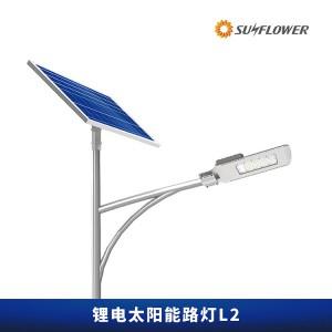 环保型锂电智能8-10米50W太阳能LED路灯L2道路照明