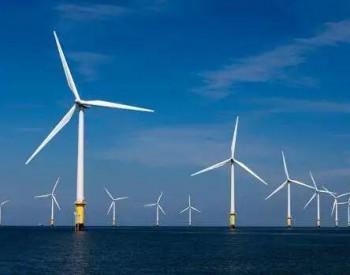 又一央地联合开发<em>海上</em>风电项目落地!