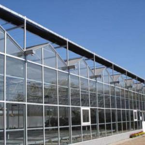 温室大棚的好处/温室大棚造价/温室大棚承建