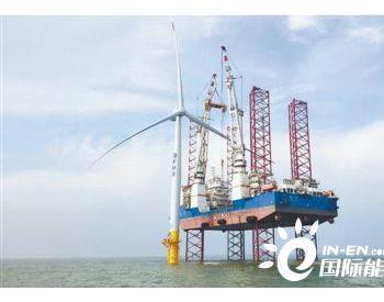 风电光伏行业加快恢复生产 但海外市场供应链等面挑战