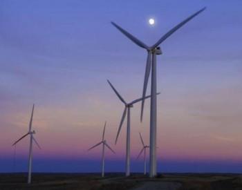 """""""风光""""产业期待更风光 风电行业加快恢复生产"""