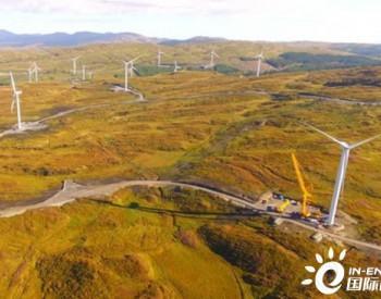 独家翻译|各企业缩减运营规模 <em>爱尔兰</em>电力需求下降20%