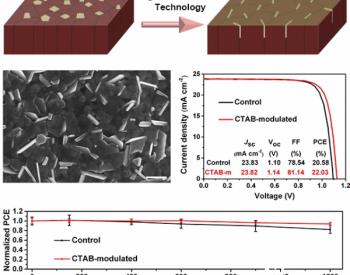 AM:配体调控过量PbI2助力高效稳定<em>钙钛矿太阳能电池</em>