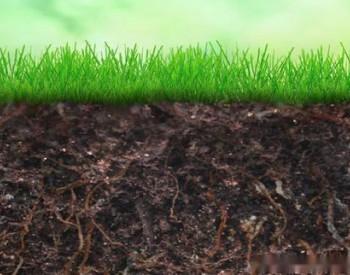 <em>生态</em>环境部:镉成农田土壤首要污染物