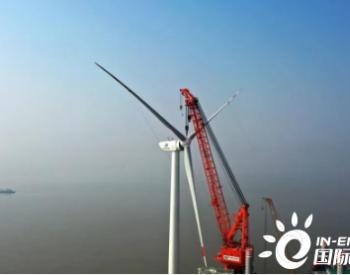 华能江苏灌云、大丰海上风电项目相继并网