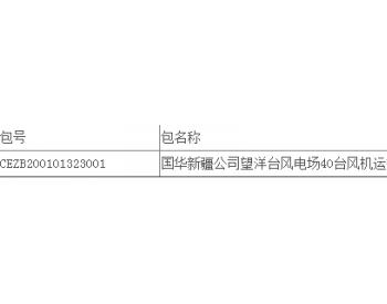 中标丨无人中标!国华投资新疆公司望洋台风<em>电场</em>40台风机运行维护服务