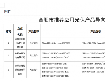 安徽合肥市经信局关于印发《合肥市推荐<em>应用光伏</em>产品导向目录(第三批)》的通知