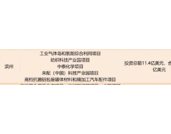 总<em>投资</em>5.4亿美元,空气<em>化工</em>氢能综合利用项目落地山东滨州