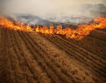 生态环境部:坚持疏堵结合 解决秸秆焚烧污染问题