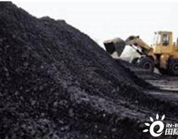 进口限制背景下 中国买家动力<em>煤</em>采购热情不减