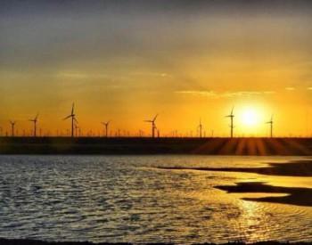 国际风电巨头首季表现冰火两重天