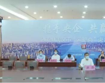 首期投资16亿 <em>国电投</em>将在湖北武汉建氢能产业基地
