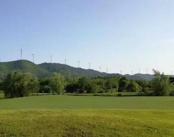 最大15MW!<em>西门子歌美飒</em>全球最大风机震撼发布!