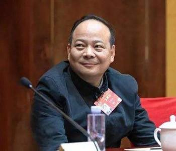 全国政协委员曾毓群:加快建设汽车强国【两会声音】