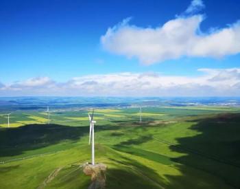 IEA:全球将减少<em>风力涡轮机</em>建设