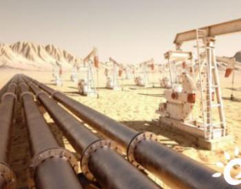 全国人大代表江寿林:进一步加大石油天然气储备能力建设