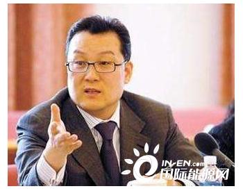 全国政协委员薛光林:加大油气<em>储备设施</em>建设,将其纳入新基建【两会声音】