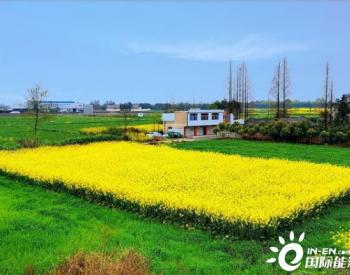 中国石化川西陆相气田累产520亿方