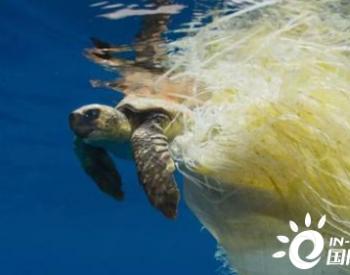 全国政协委员阮诗玮建议:加强我国海洋微塑料污染防控【两会声音】