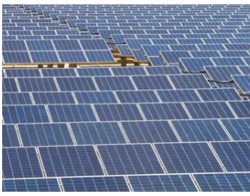 美國最大太陽能項目威脅生態惹眾怒
